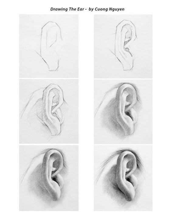 Guía Única: Cómo aprender a dibujar rostros humanos, paso a paso 2072501_12