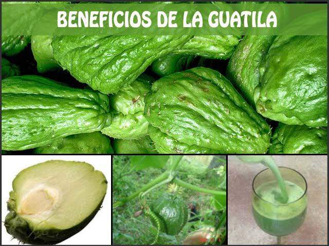 beneficios de la guatila