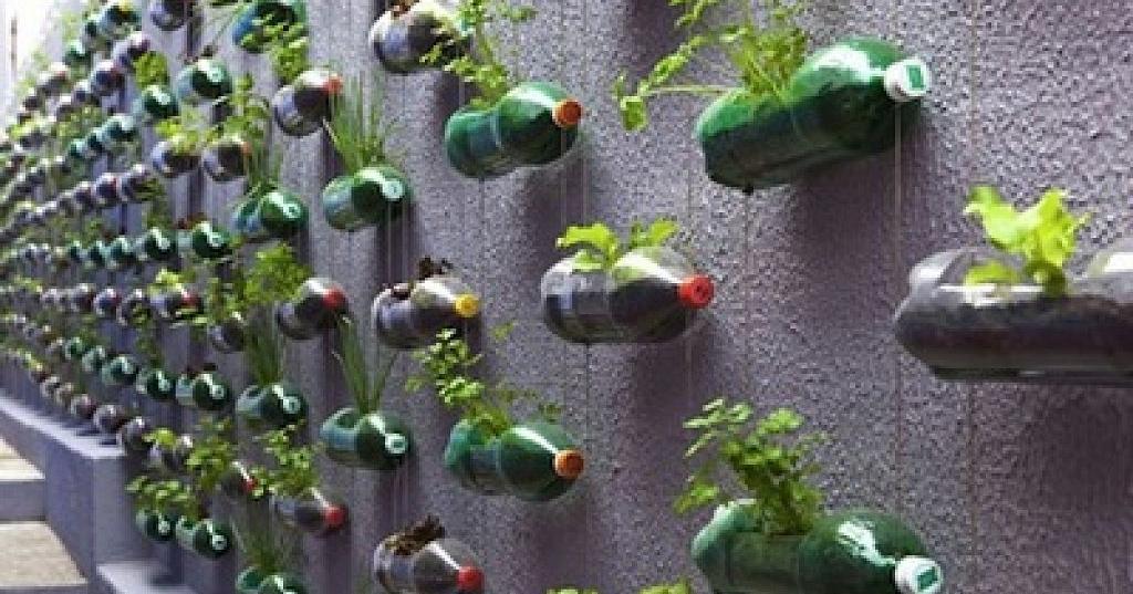 Cómo crear un estupendo huerto vertical fácilmente