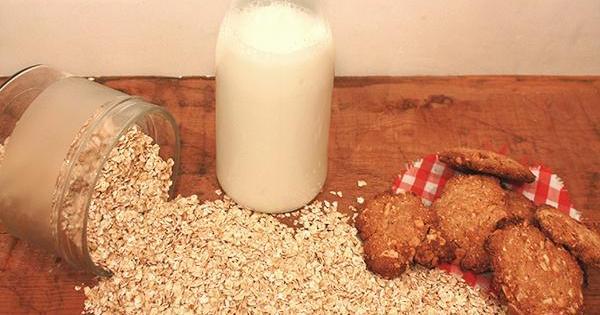 Unas galletas llenas de energía, perfectas para el desayuno: son de avena y miel
