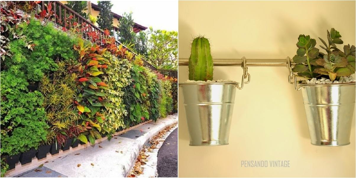 8 tipos de jard n vertical para hacer en casa plantas Tipos de plantas para jardines verticales