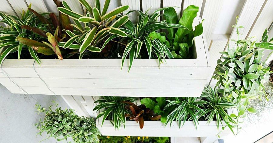 Como hacer un huerto vertical - Plantas aromaticas exterior ...
