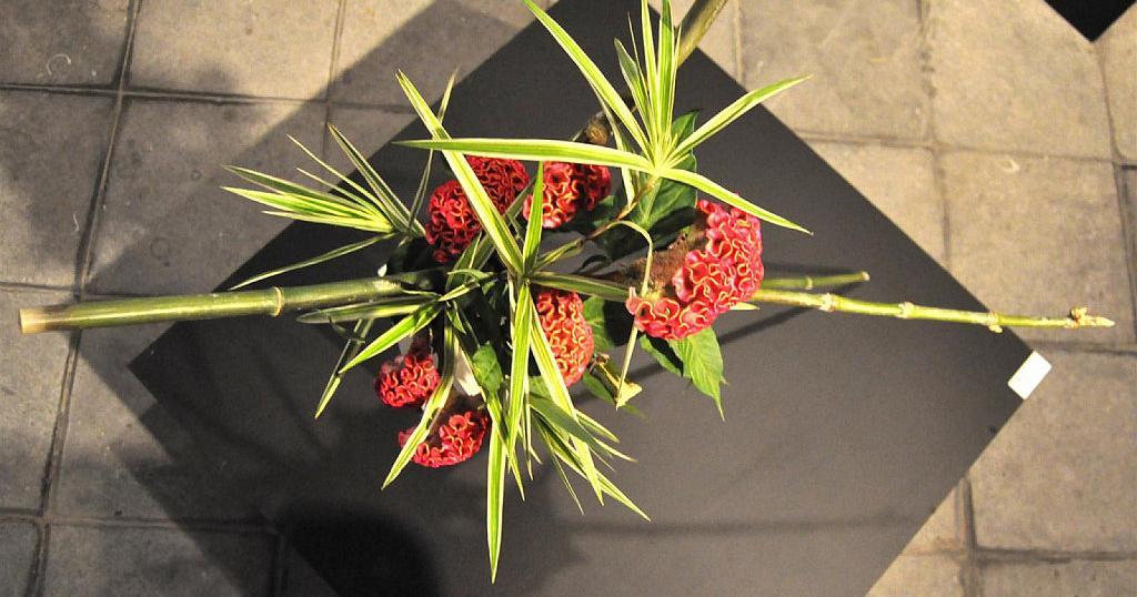ikebana o arreglos florales que dejan sin palabras - Composiciones Florales