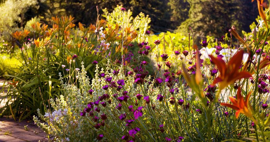 Consejos útiles para diseñar tu propio jardín