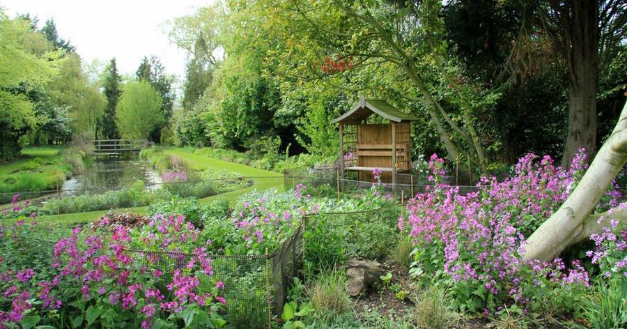 El jard n r stico el campo en casa plantas - Casa campo y jardin ...