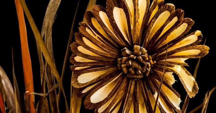 Información completa sobre los métodos para secar flores