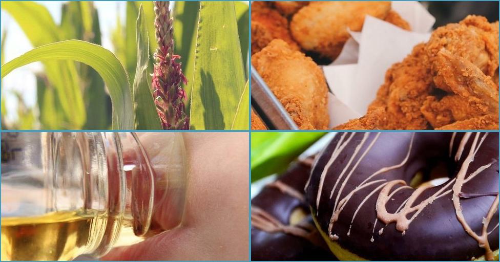 Los 20 alimentos más cancerígenos
