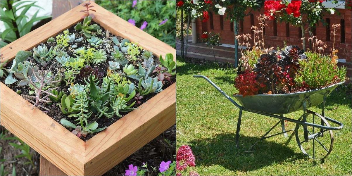 Como hacer un jardin con piedras for Como adornar un jardin con plantas