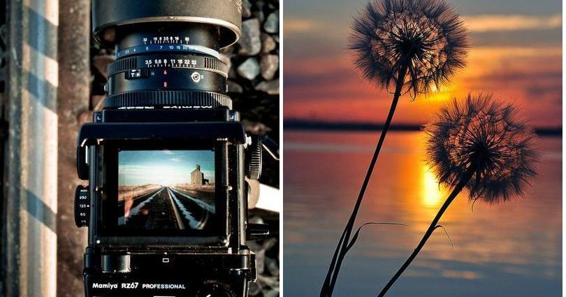 Todo lo que un principiante debe saber sobre fotografía