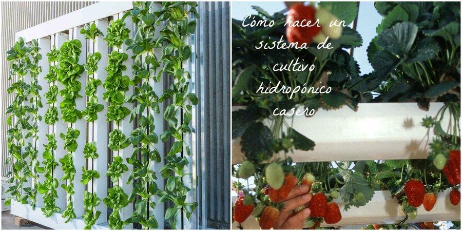 C mo crear un sistema de cultivo hidrop nico casero paso a - Jardin hidroponico ...