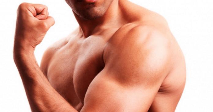 ¿Cómo afecta la testosterona al crecimiento muscular y la pérdida de grasa?