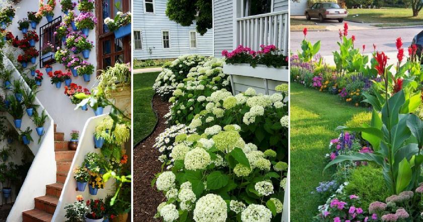 Ideas para decorar jardines frontales plantas for Como decorar mi jardin con piedras y plantas