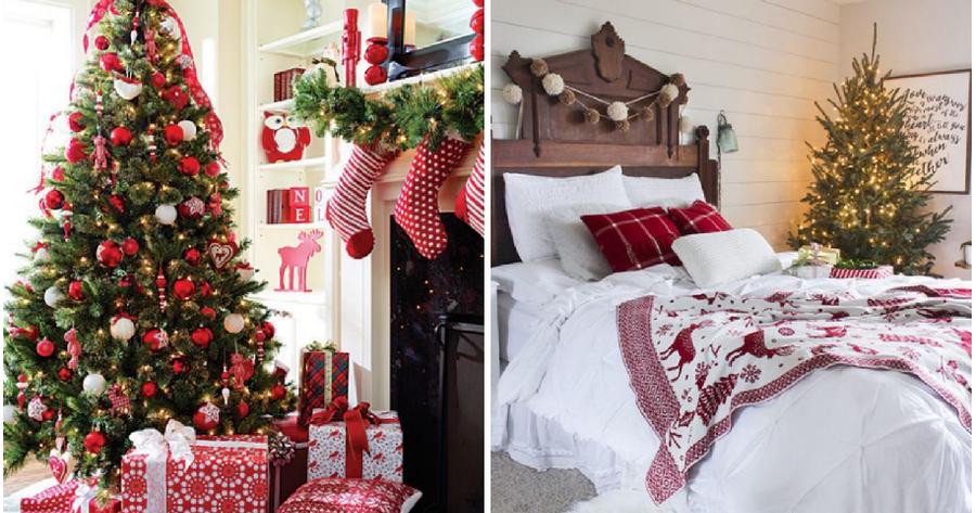 blanco y rojo la decoracin estrella de la navidad - Decoracion Navidea