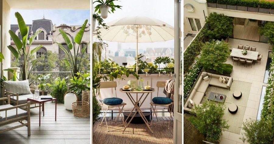 Plantas para terrazas con mucho sol for Decorar patio exterior