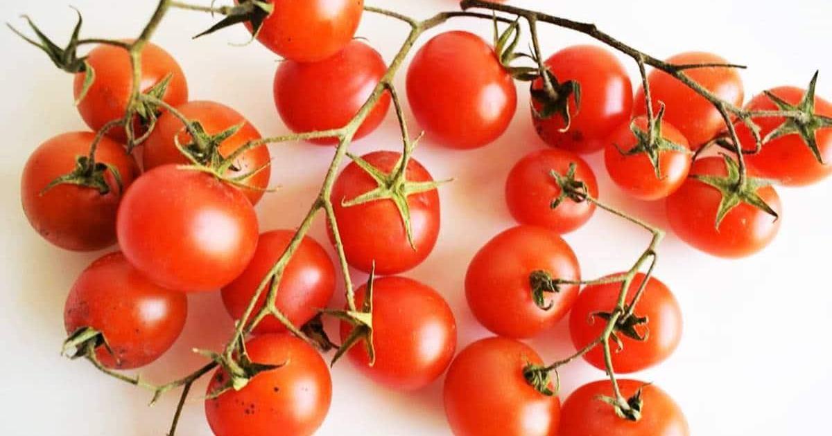 Recetas con tomates ¡fáciles y ricas!