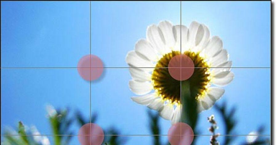 Cómo mejorar fácilmente la composición de tus fotos