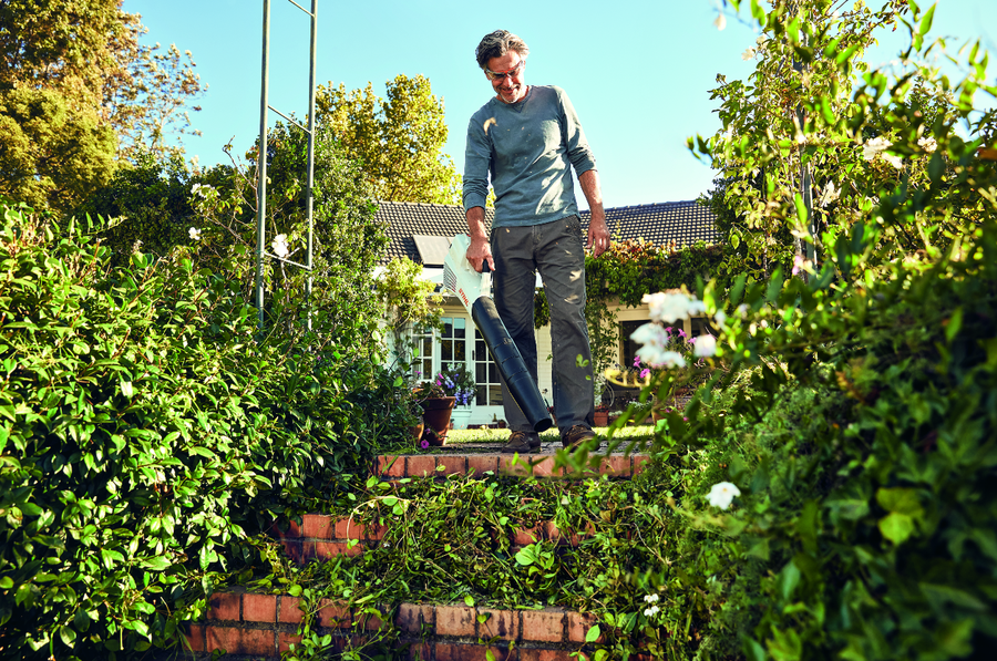 Revelamos los 5 trucos que todo jardinero experto conoce for Trucos jardineria