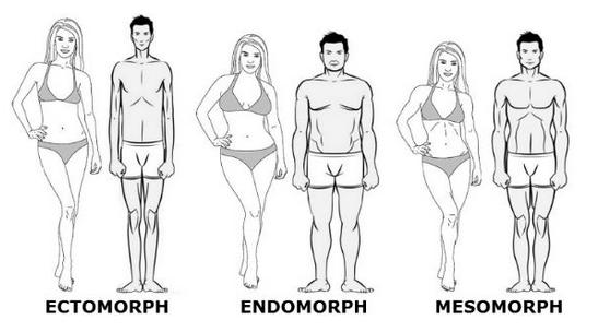 Descubre cuál es tu tipo de cuerpo y qué dieta y ejercicios aplicar para ponerte en forma