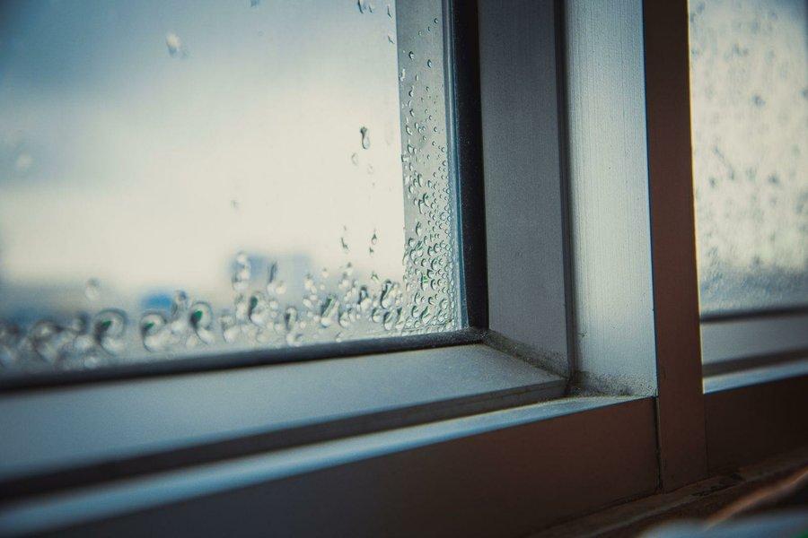 Que la condensación no sea un problema este invierno | Bricolaje