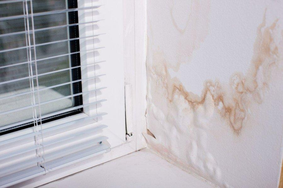C mo eliminar humedades en la pared bricolaje Humedades en las paredes