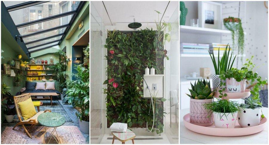 C mo cultivar en balcones ruedas carritos cajas de madera tips e inspiraci n plantas - Huerto en casa ikea ...