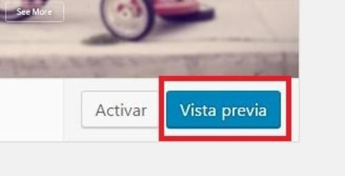 vista-previa-temas-wordpress