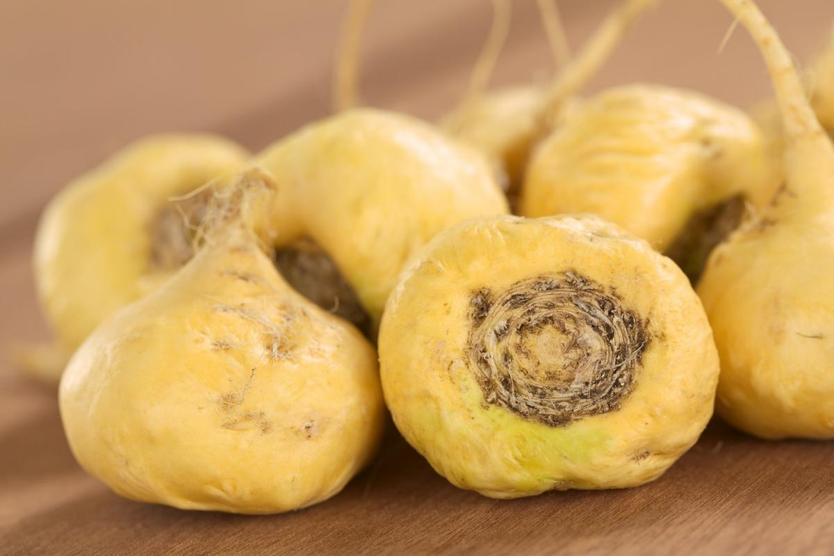 15088617 - fresh maca roots or peruvian ginseng (lat. lepidium meyenii) which are popular in peru for their various health effects (selective focus, focus on the maca roots in the front)