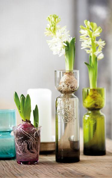 Hyacinth vase, House Doctor
