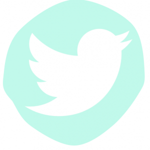 ICONO TWITTER BEMYDECO