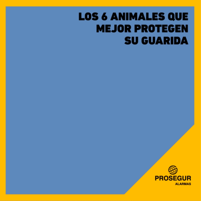Animales que mejor protegen su guarida.