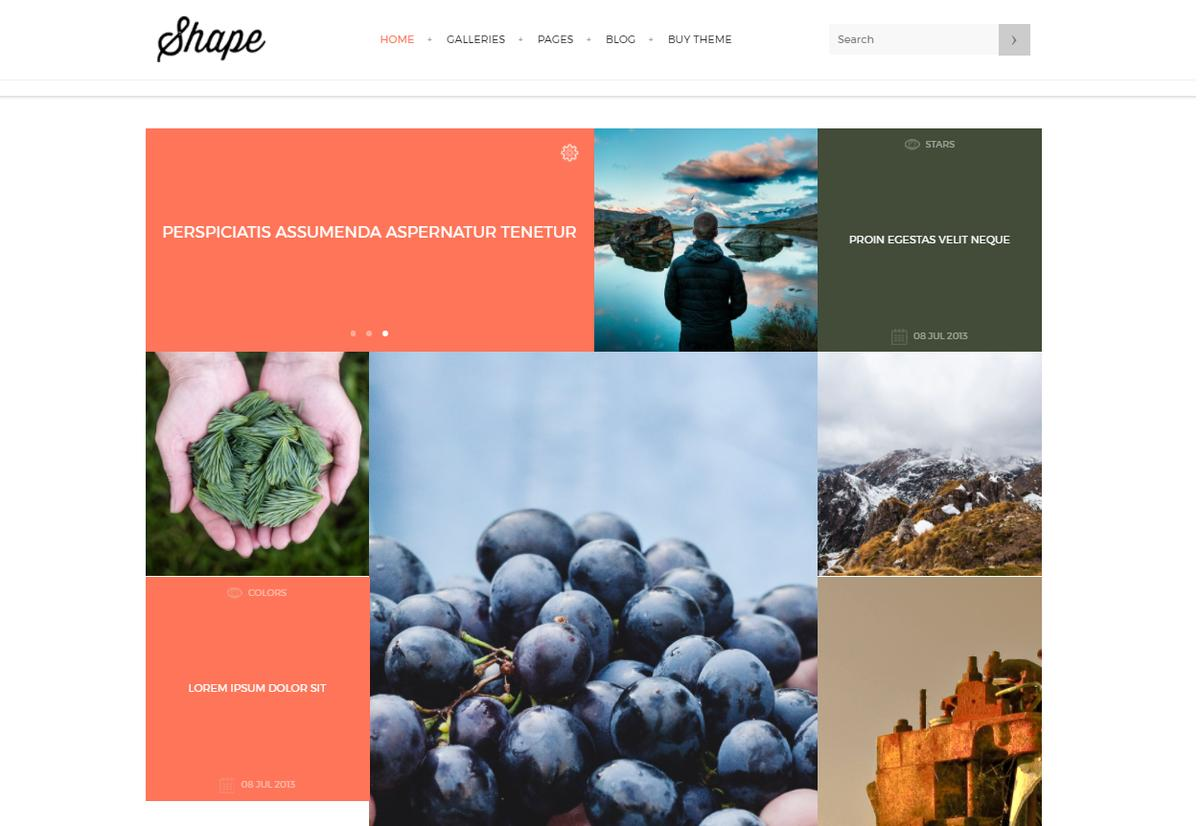 Shape WordPress Theme Themeforest