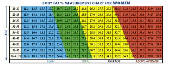 Image result for ideal fat percentage