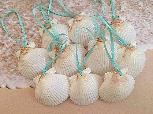 White Glitter Seashell Christmas Ornaments with Turquoise Ribbon, 10