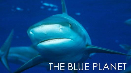 THE BLUE PLANET: EPISODE 06: CORAL SEAS