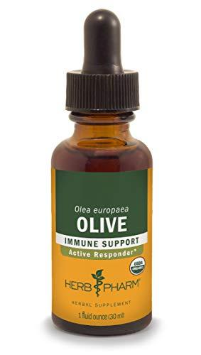Herb Pharm Certified Organic Olive Leaf Extract for Immune System Support - 1 Ounce