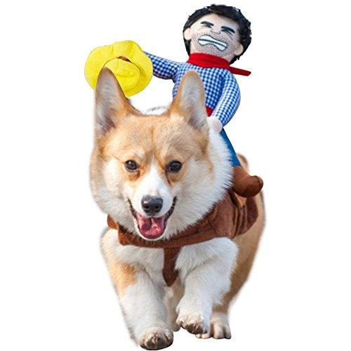 Tie langxian Pet Costume Dog Costume Clothes Pet Outfit Suit Cowboy Rider Style,Pet Dogs Cospaly Halloween, New Year Gift (M, Hat)