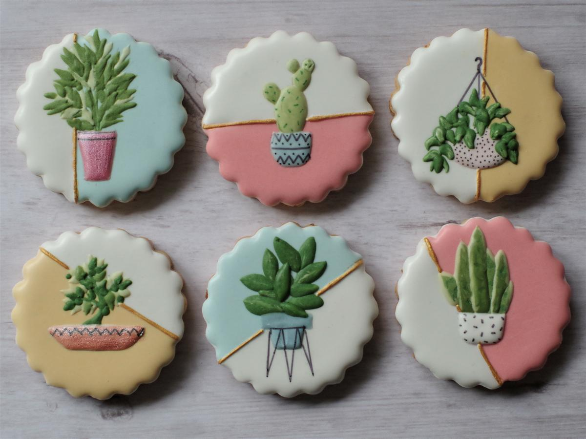 doctorcookies plant cookies (5).JPG