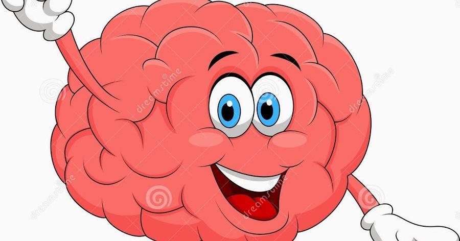 Factores que afectan a nuestro cerebro produciendo pérdida de neuronas