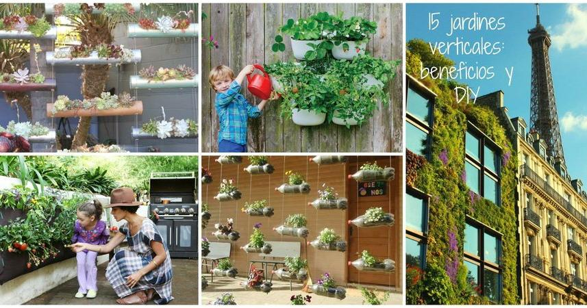 Ideas de plantas for Como hacer un jardin vertical de interior