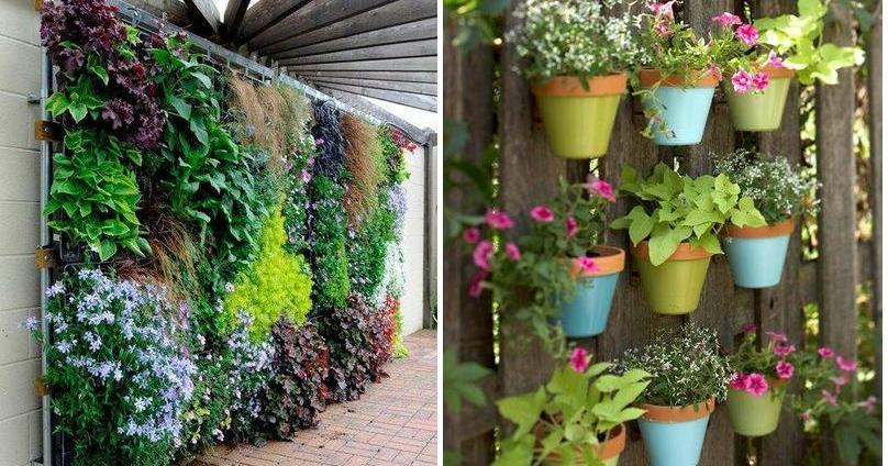 25 modelos de jardines verticales para espacios peque os for Modelos de jardines en casa