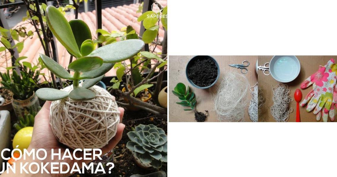 ¿Cómo hacer un precioso kokedama?