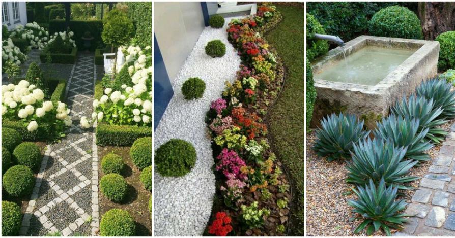Ideas de plantas - Jardines baratos ...