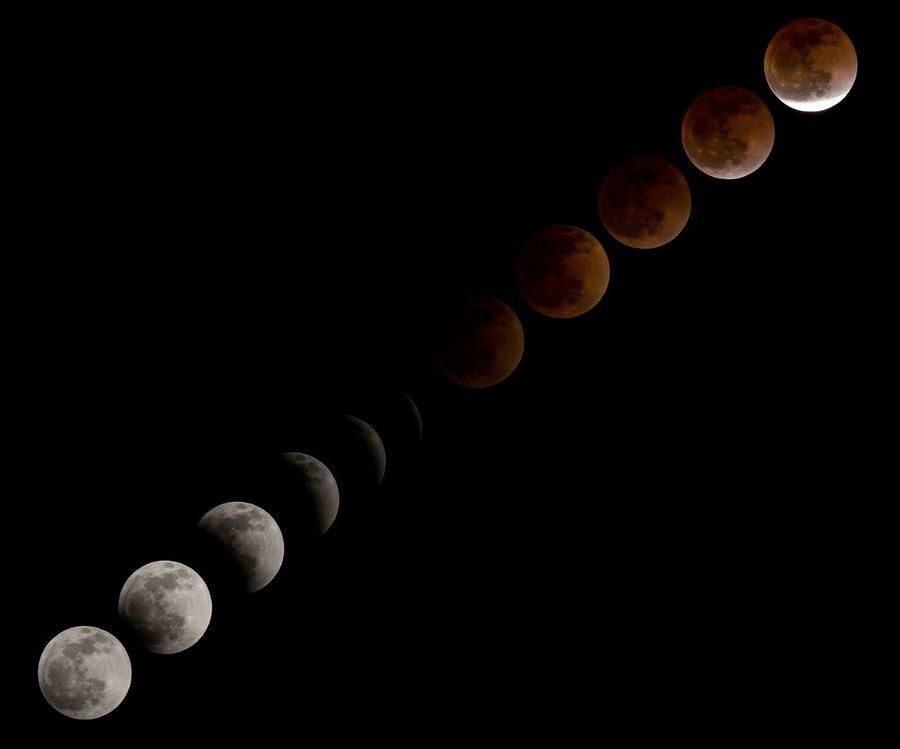 Calendario Lunar De Siembra.Calendario Lunar De Siembra Para 2019 Plantas