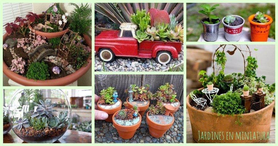 Jardines en miniatura plantas for Accesorios para jardines pequenos