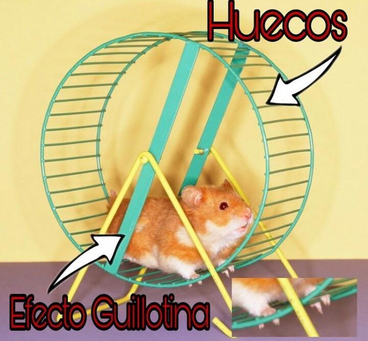Hamster perdida de peso
