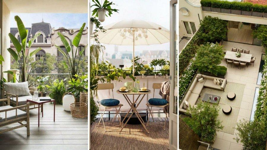 Las Mejores Ideas Para Decorar Tu Terraza Con Plantas Sea
